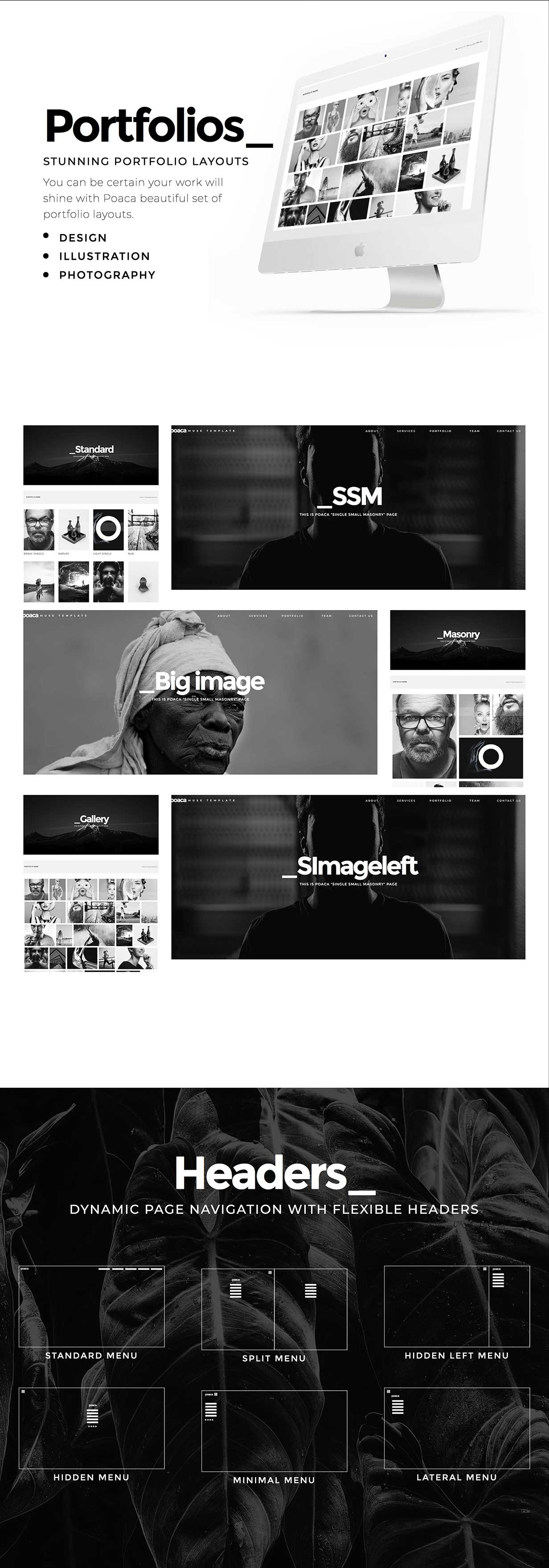 Poaca Muse Template - 2