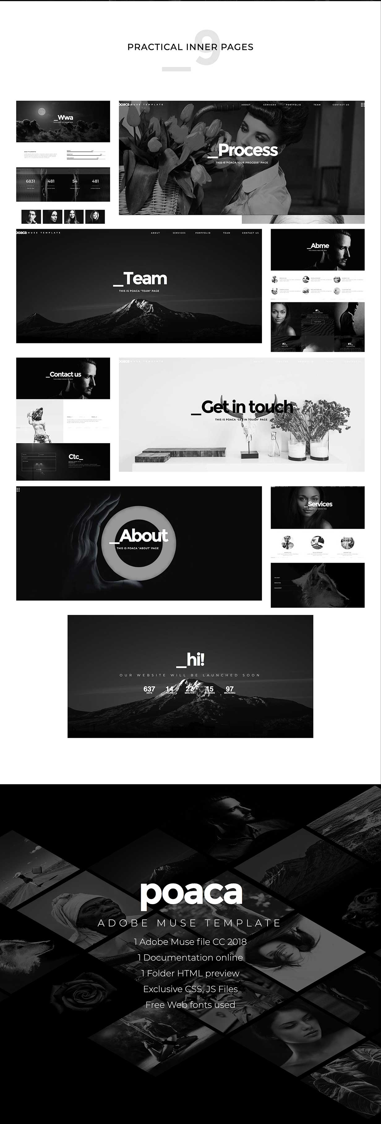 Poaca Muse Template - 3